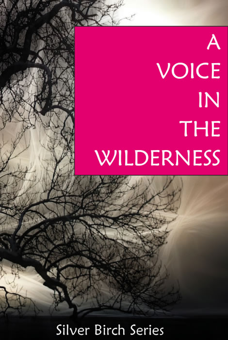 A Voic in the Wilderness