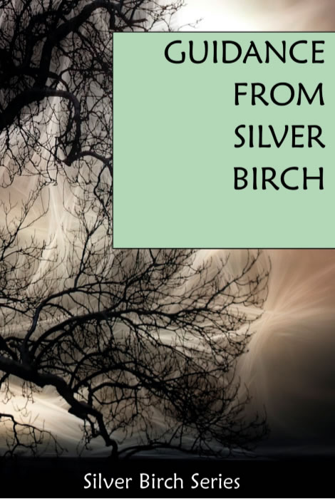 Guidance from Silver Birch