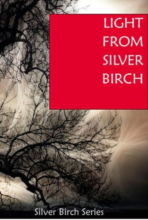 Light from Silver Birch